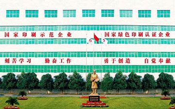 河南省乐动体育ldx印务股份有限公司