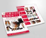 蛋卷鞋--DM宣传册